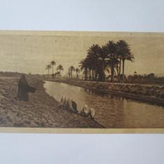 Carte postala 150 x 75 mm necirculata Egipt-Un peisaj langa Cairo anii 20
