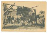 3606 - ALEXANDERFELD, Cahul, Moldova, Basarabia - old postcard - unused, Necirculata, Printata