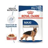 Royal Canin Maxi Adult, 1 plic x 85 g