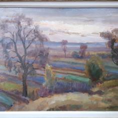 Samuel Mutzner ( 1884 - 1959 ), Peisaj