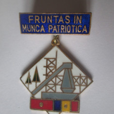 Insigna fruntas in munca patriotica anii 80, Romania de la 1950
