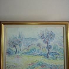 peisaje ulei pe panza