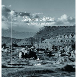 Drumul Matasii. O Istorie In Imagini, Wang Qing