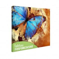 Tablou fosforescent Fluture turqoise