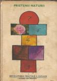 Enciclopedia practica a copiilor 5: Prietenii naturii (cartonata)