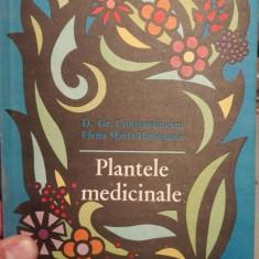 Plante medicinale – Constantinescu, Hatieganu