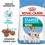 ROYAL CANIN MINI STARTER Mother & Babydog - 3kg