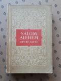 HALAL DE MINE SUNT ORFAN  × SALOM ALEHEM romane povestiri