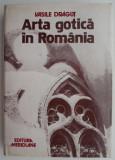 Arta gotica in Romania – Vasile Dragut