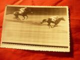 Fotografie - Final de Cursa de Cai , interbelica , dim. = 11,3x8,7cm