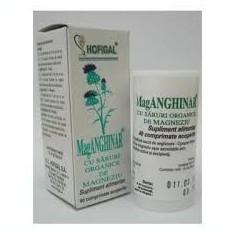 MagAnghinar 60 comprimate - Hofigal
