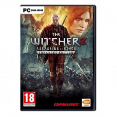 The Witcher 2 Assassins of Kings PC