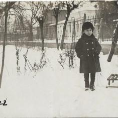 Fotografie veche copil sanie iarna