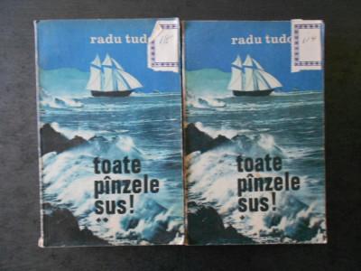 RADU TUDORAN - TOATE PANZELE SUS!  2 volume foto