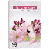 Set Lumanari Tip Pastila Aroma Floare de Prun 6 buc.