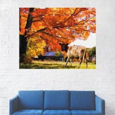 Tablou Canvas, Peisaj de Toamna pe Pajiste - 20 x 25 cm