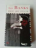 Iain Banks - Pași pe Sticlă