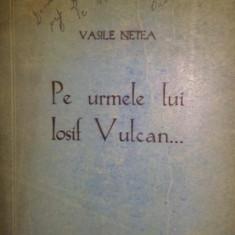 PE URMELE LUI IOSIF VULCAN . . . - VASILE NETEA