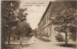 Carte postala Hotel Victor Baile Felix austro-ungara