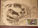 Expo canina Saint Bernard Timisoara 1983