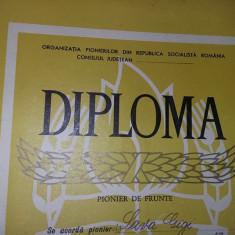 DIPLOMA DE PIONIERI-PIONIER DE FRUNTE 1969-TOT INAINTE-Comunista/Ceausista,T.GRA