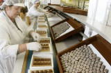 Angajare fabrica cafea1800e