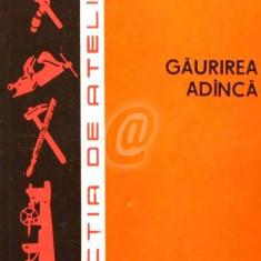 Gaurirea adanca (1982)