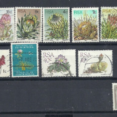 AFRICA DE SUD – FLORI, CACTUSI, timbre stampilate, DB32