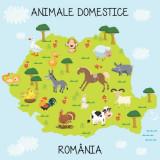 Fototapet Animale Domestice 200 x 200 cm