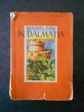 ALEXANDRU MARCU - IN DALMATIA (1939, cu 126 fotografii, o harta)