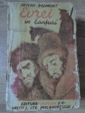 EVREI IN LANTURI-JOSEPH DELMONT