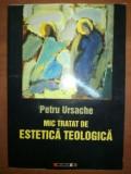 Mic tratat de estetica teologica- Petru Ursache
