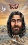 Cine a fost... Iisus?, Pandora-M