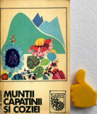 Muntii Capatinii si Coziei Nicolae Popescu