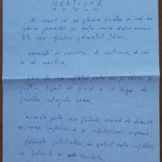 Manuscris Geo Bogza , Martisor , 4 pagini