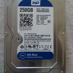 Hard disk PC Desktop 250GB HDD SATA 3.5 Western Digital Blue WD2500AAKX OK, 200-499 GB, 7200