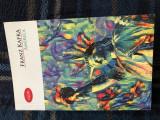 America, de Franz Kafka, Ed. Litera 2017, aproape noua