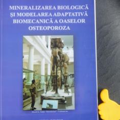 Mineralizarea biologia si modelare adaptiva biomecanica a oaselor Panait