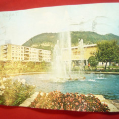 Ilustrata Piatra Neamt - Vedere circulat 1975