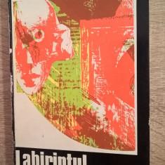 Petre Rado - Labirintul umbrelor (Expresionismul in cinema) - autograful trad.