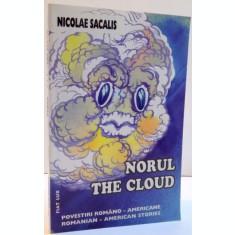 NORUL , THE CLOUD de NICOLAE SACALIS , 2004