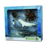 Set 6 figurine viata acvatica Collecta, 3 ani+