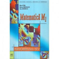 Matematica M1 Manual pentru clasa a XI - a