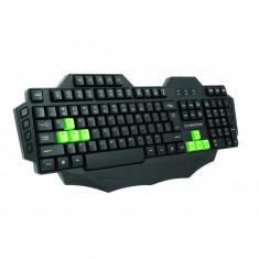Tastatura Multimedia Player Esperanza, Ninja, USB