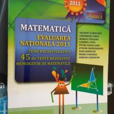 MATEMATICA EVALUARE NATIONALA  TEME RECAPITULATIVE 45 DE TESTE REZOLVATE PERIANU