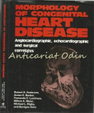 Morphology Of Congenital Heart Disease - Robert H. Anderson, Anton E. Becker