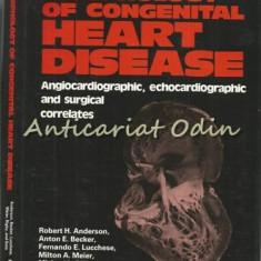 Morphology Of Congenital Heart Disease - Robert H. Anderson, Anton E. Becker