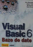 Visual Basic 6. Baze de date