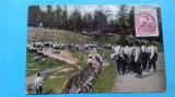 Bucuresti Militari Armata Romana La manevre, Circulata, Fotografie