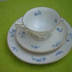 Portelan vechi Heinrich H&G SELB Bavaria, superbset de mic dejun